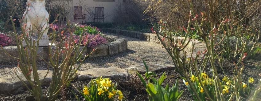 Frühling im prospega Garten
